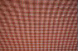 126 Orange tern